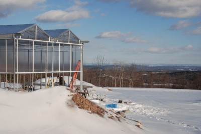 Green House in the Winter, 2009