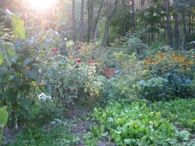 garden2008